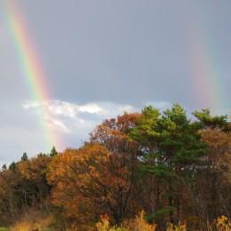 2011年11月20日の虹